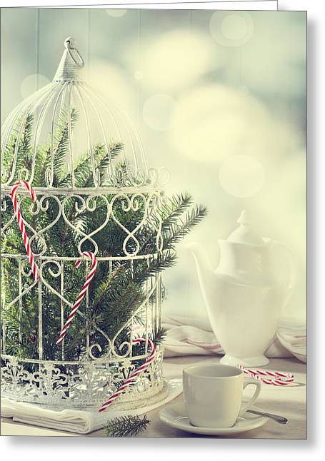 Christmas Birdcage Greeting Card by Amanda Elwell