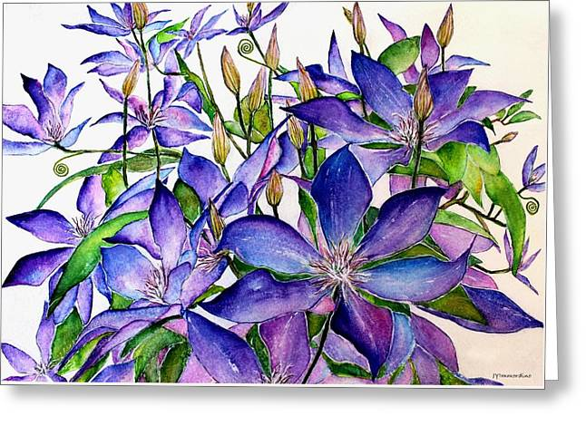 Clematis Climbing Vine Greeting Card by Janet Immordino