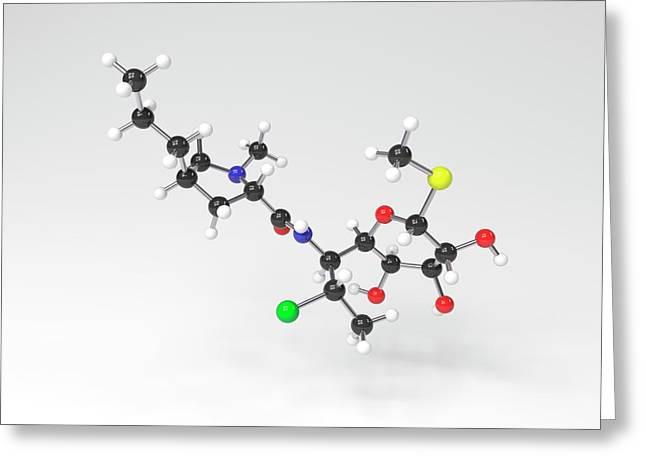 Clindamycin Antibiotic Molecule Greeting Card by Indigo Molecular Images