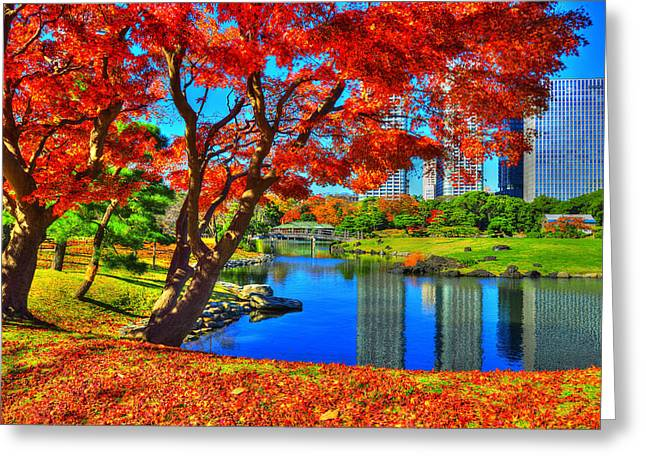 Colors Of Fall Greeting Card