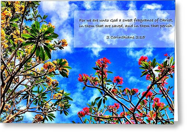 2 Corinthians 2 15 Greeting Card