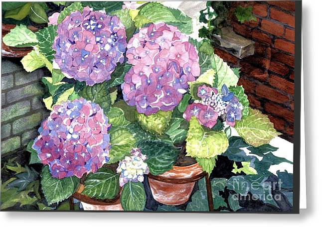 Corner Garden Greeting Card by Barbara Jewell