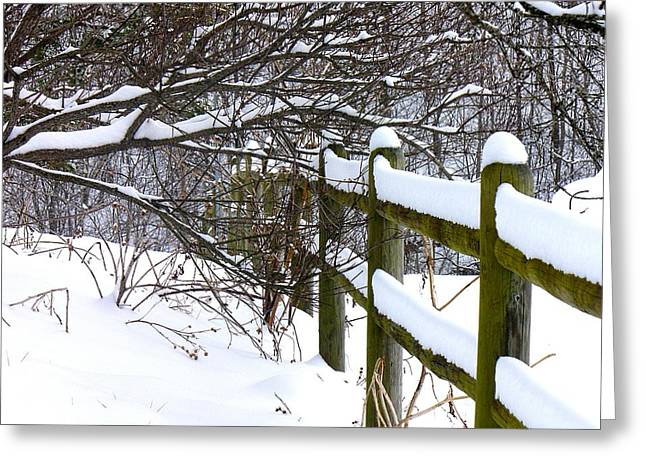 Country Winter Greeting Card by Deena Stoddard