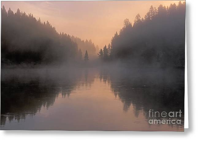 Dawn On The Yellowstone River Greeting Card by Sandra Bronstein
