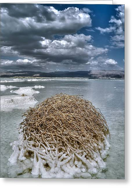 Dead Sea Monuments Of Nature  Greeting Card by Isaac Silman