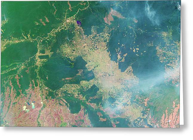 Deforestation In The Amazon Greeting Card by Nasa Earth Observatory
