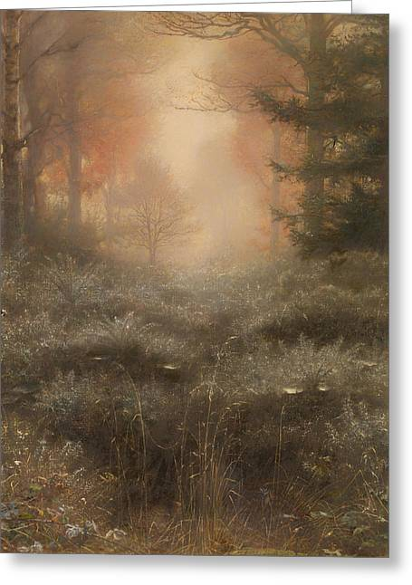 Dew Drenched Furze  Greeting Card by Mountain Dreams