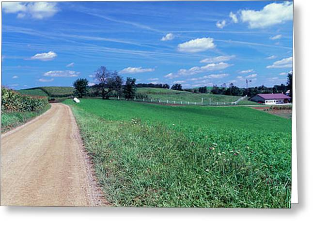 Dirt Road Passing Through A Field Greeting Card by Panoramic Images