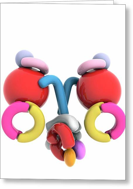 Dna Polymerase IIi Holoenzyme Greeting Card by Ramon Andrade 3dciencia