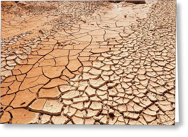 Dry Riverbed Greeting Card by Ashley Cooper