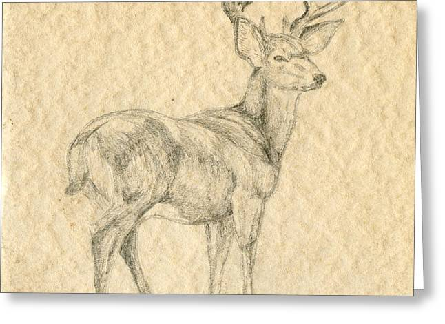 Greeting Card featuring the drawing Elk by Mary Ellen Anderson