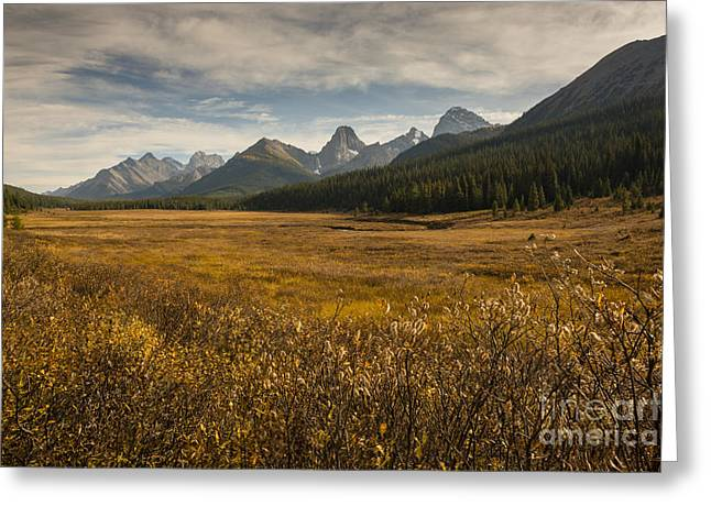 Engadine Meadow Greeting Card by Ginevre Smith