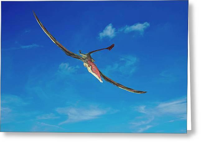 Eudimorphodon Pterosaur Greeting Card
