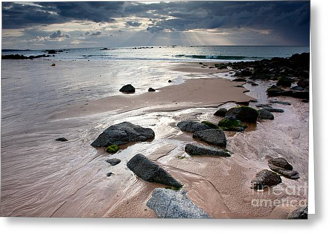 Evening At The Sea Greeting Card by Nailia Schwarz