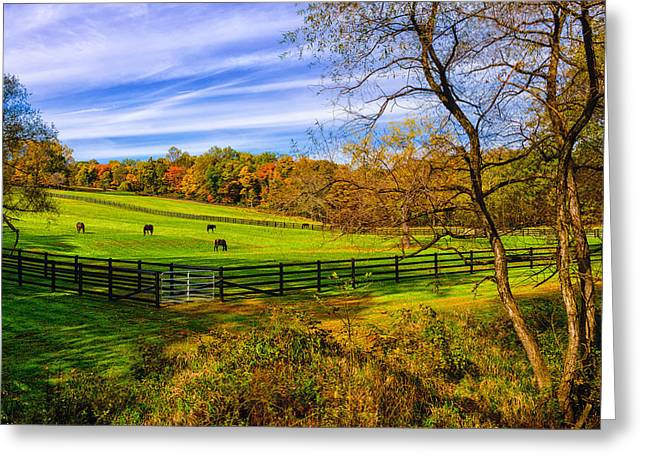 Greeting Card featuring the photograph Fall Colors by Louis Dallara