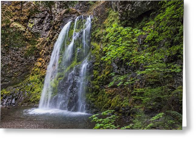 Fall Creek Falls Greeting Card by Loree Johnson