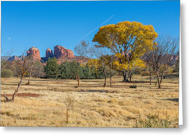 Fall Field On Cathedral Rock Greeting Card by Scott Campbell