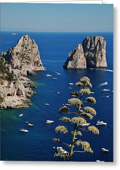 Faraglioni In Capri Greeting Card by Dany Lison
