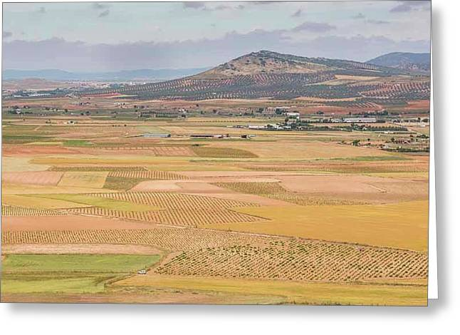 Farming Near Consuegra, Spain Greeting Card