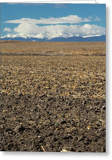 Farmland Below The Rocky Mountains Greeting Card by Jim West