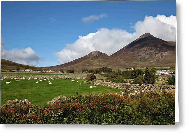 Farmland, Stone Walls In The Midste Greeting Card by Panoramic Images