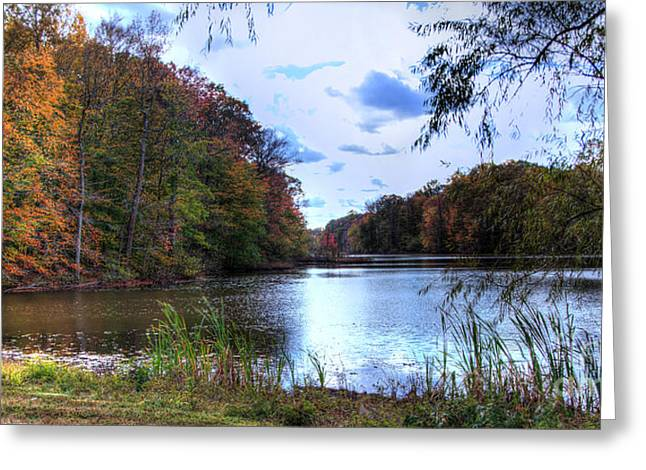 Farrington Lake Greeting Card by Louise Reeves
