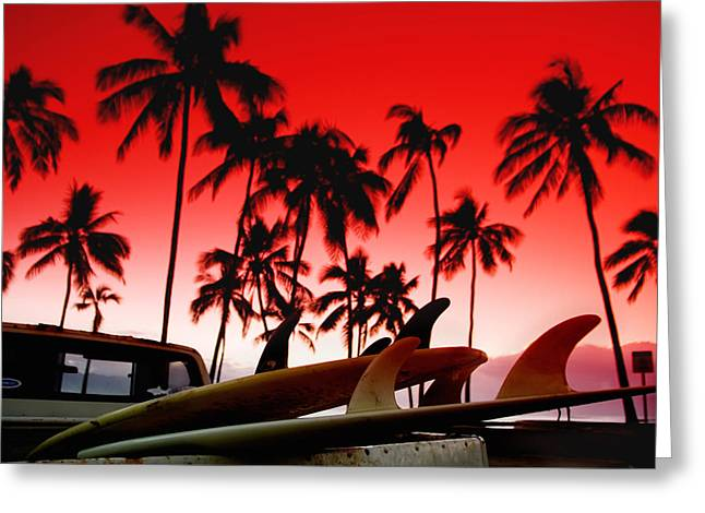Fins N' Palms Greeting Card