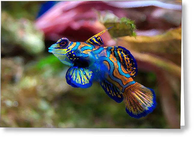 Fish Paintings Greeting Card by Nicole Gardner