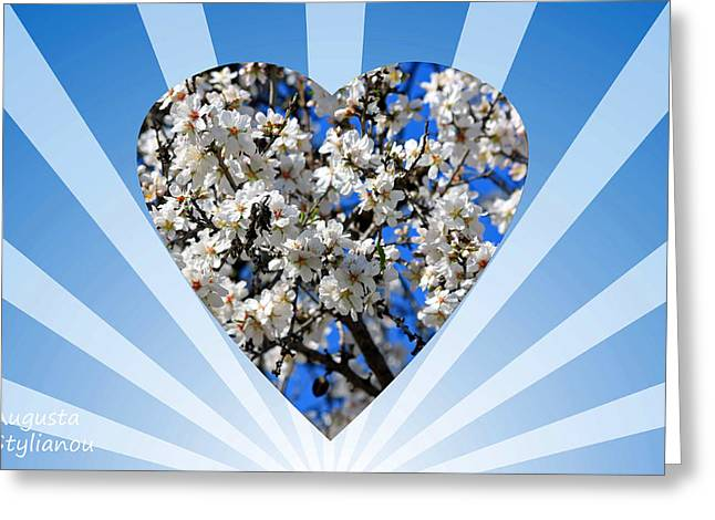 Floral Heart Greeting Card by Augusta Stylianou