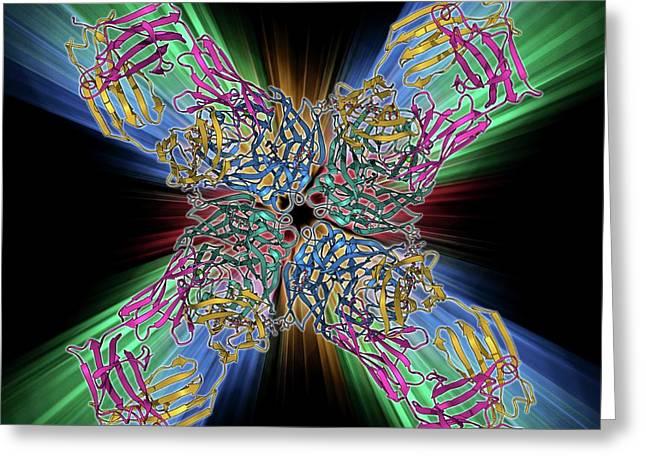 Flu Virus Surface Protein And Antibody Greeting Card