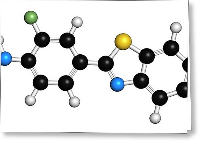Flutemetamol 18f Pet Tracer Molecule Greeting Card