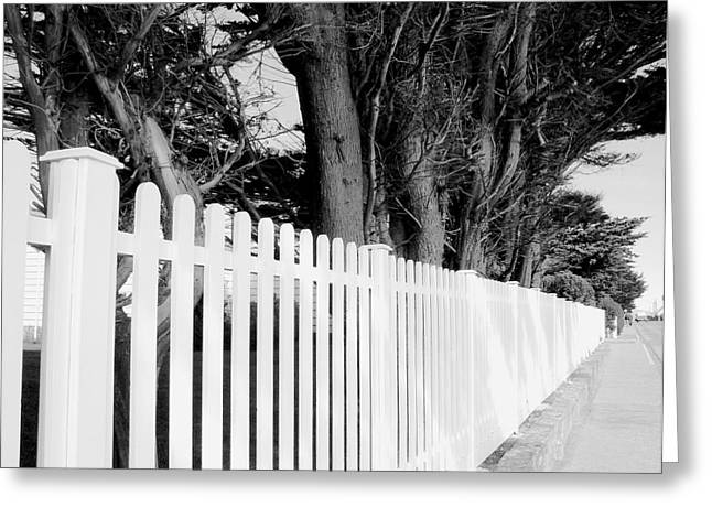 Follow The Fence Greeting Card by Julie Palencia