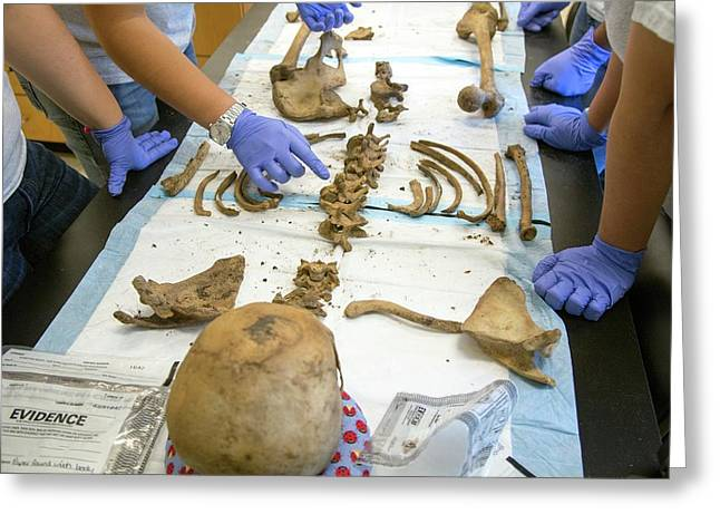 Forensic Scientists Identifying Remains Greeting Card