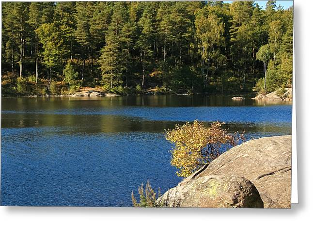 Forest Lake Greeting Card by Lutz Baar