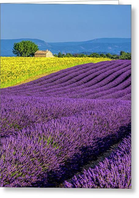 France, Provence, Old Farm House Greeting Card