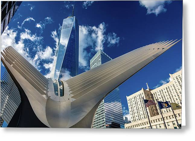 Freedom Tower And Oculos - Seen Greeting Card