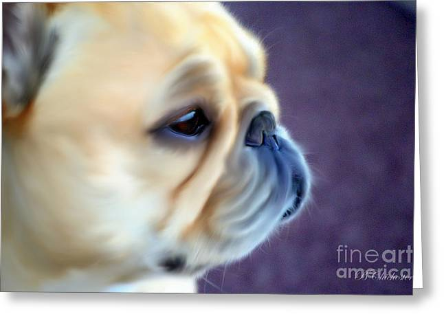 French Bulldog Head Study Greeting Card by Barbara Chichester