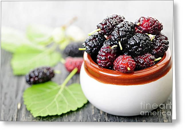 Fresh Mulberries Greeting Card by Elena Elisseeva