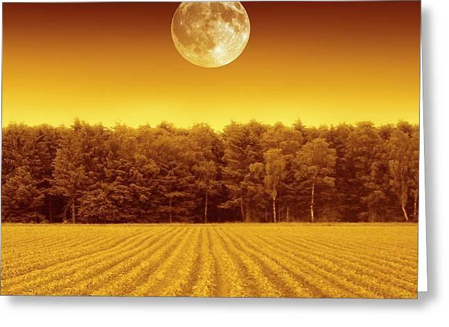 Full Moon Over A Field Greeting Card by Detlev Van Ravenswaay