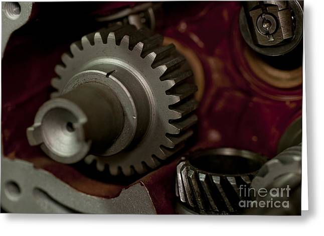 Gears  Greeting Card by Wilma  Birdwell