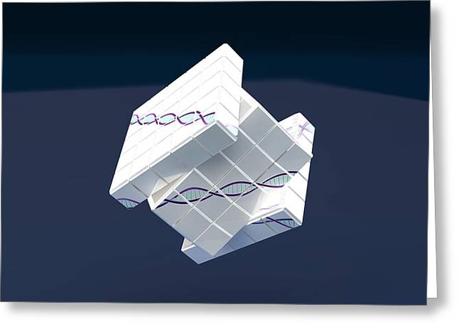 Genetic Engineering, Conceptual Greeting Card
