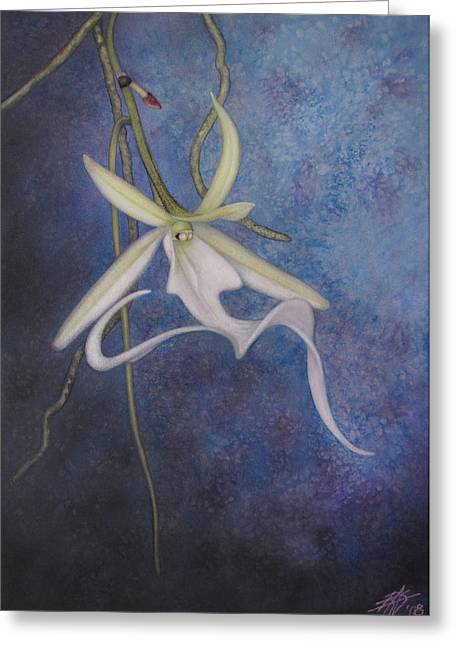 Ghost Orchid II Greeting Card