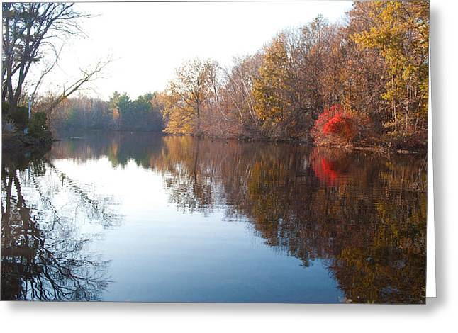 Gingerbread Lake Greeting Card by Gretchen Lally