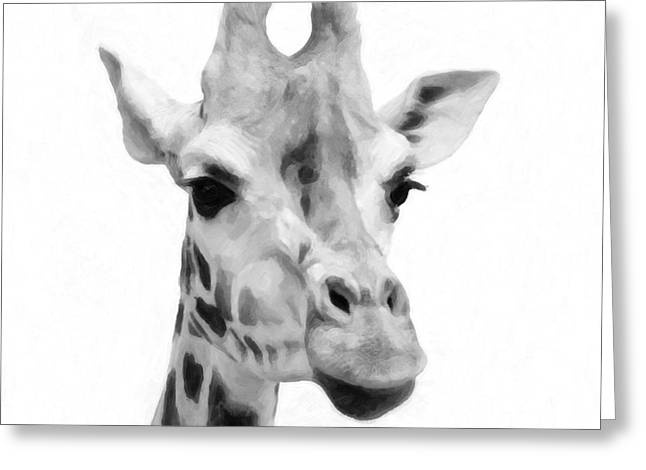 Giraffe On White Background  Greeting Card