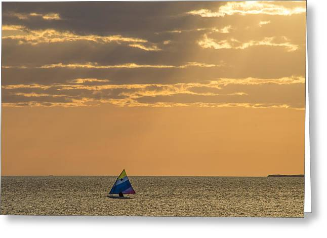 Golden Sail On Menemsha Bight Greeting Card