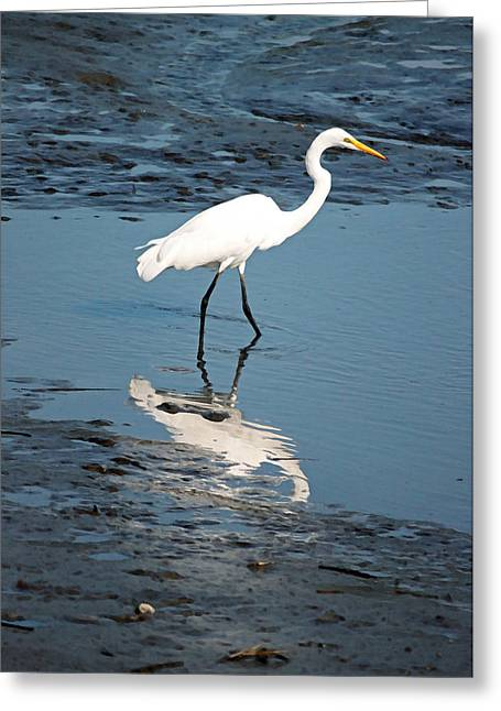 Great White Egret And Reflection Greeting Card