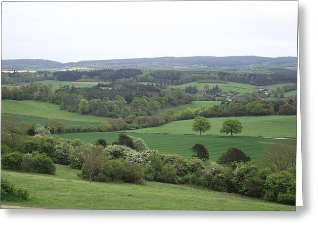 Green And Pleasant Land Greeting Card by Jayne Wilson