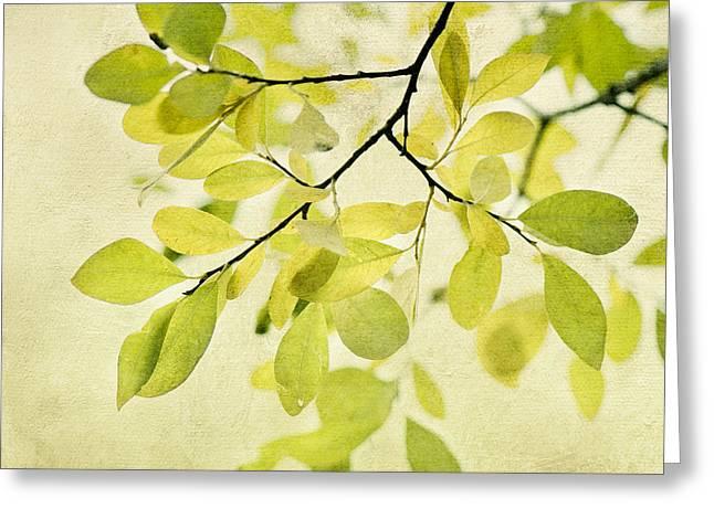 Green Foliage Series Greeting Card by Priska Wettstein