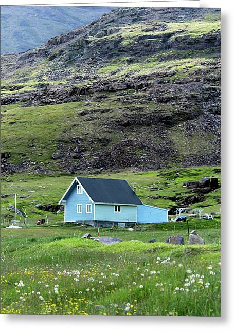 Greenland, Igaliku Greeting Card by David Noyes