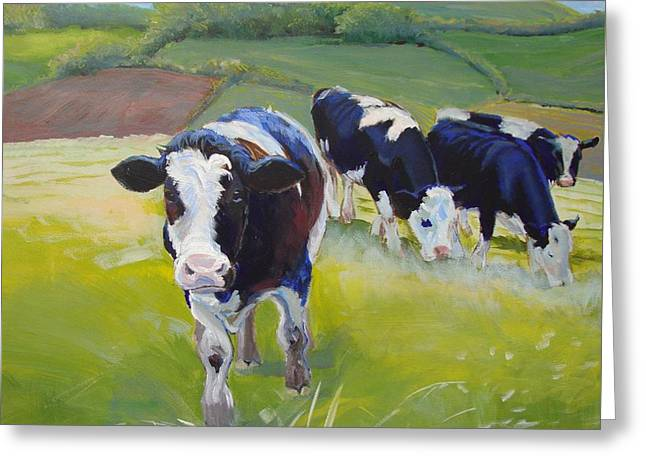 Holstein Friesian Cows Greeting Card by Mike Jory